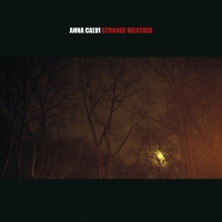 ANNA CALVI- | Album : Strange weather (2014) |