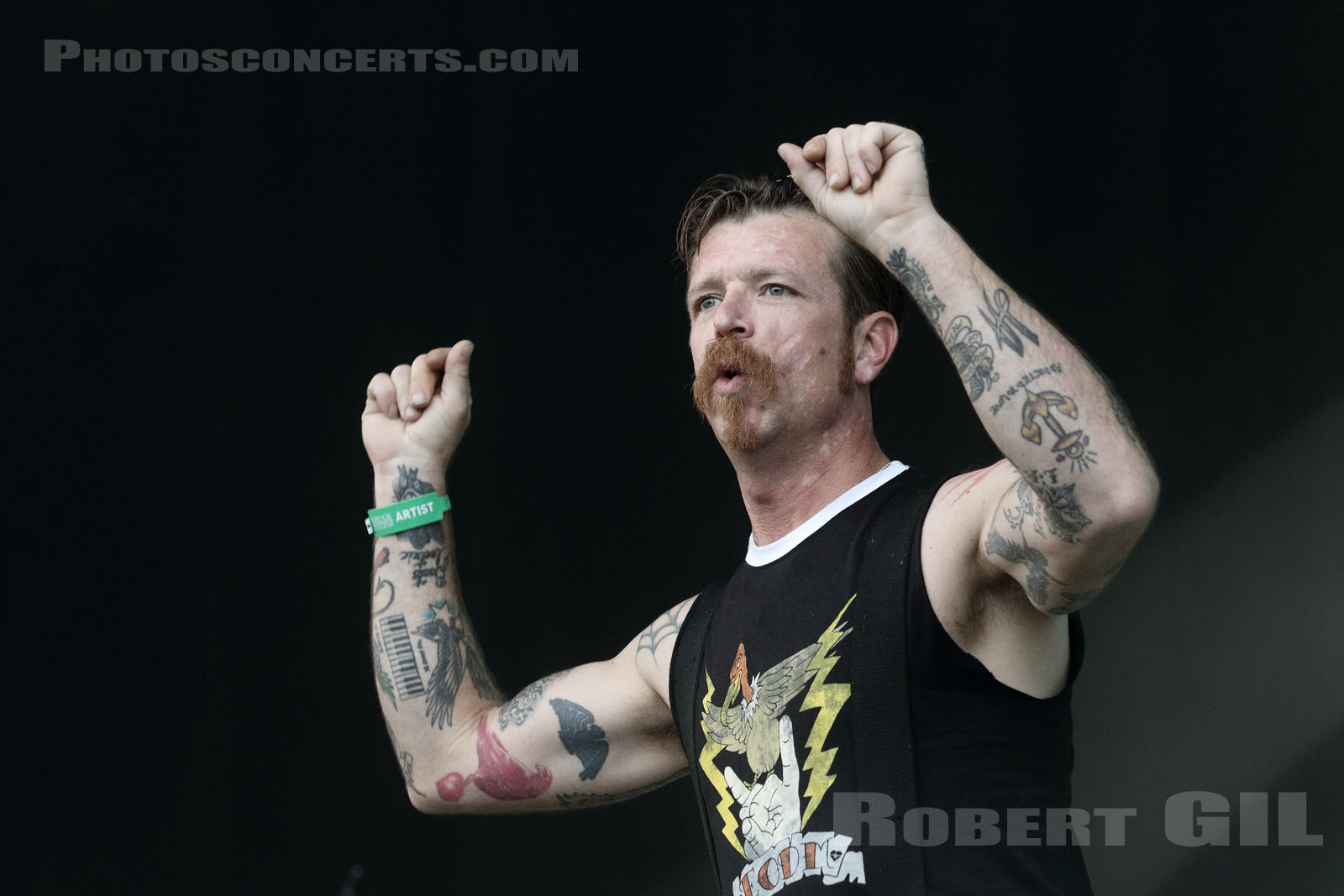 EAGLES OF DEATH METAL - 2015-07-05 - BELFORT - Presqu'ile du Malsaucy