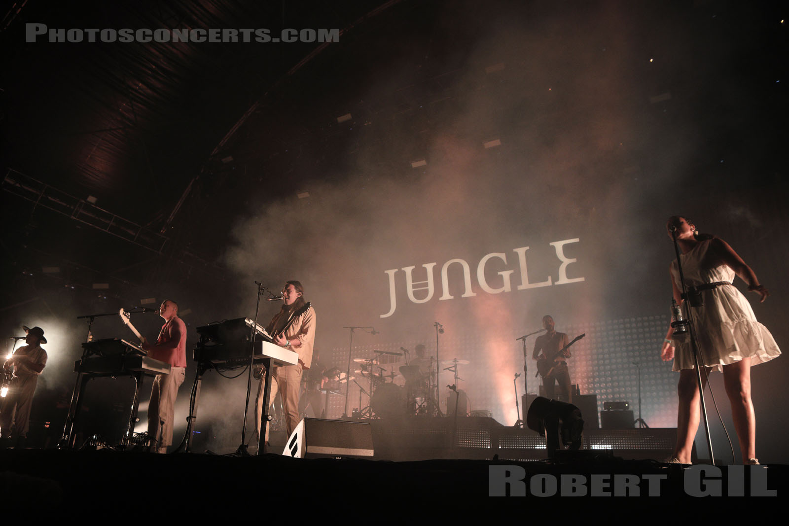 JUNGLE - 2019-08-24 - SAINT CLOUD - Domaine National - Scene de la Cascade