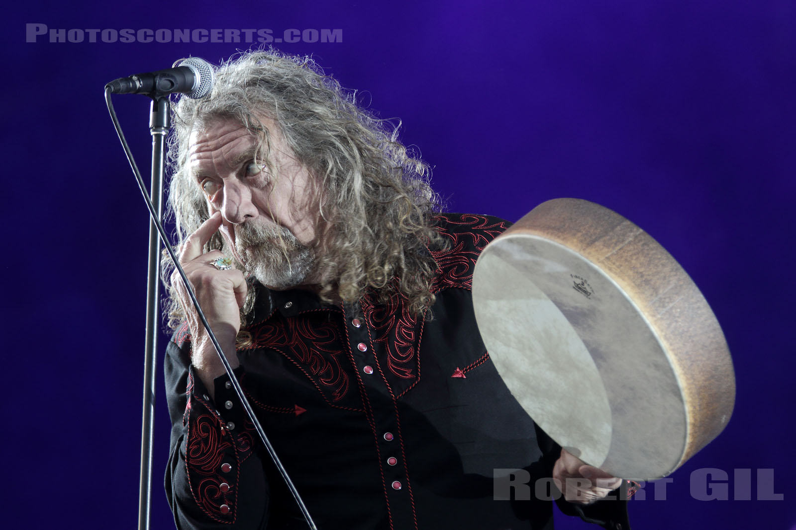 ROBERT PLANT AND THE SENSATIONAL SPACE SHIFTERS - 2016-07-02 - HEROUVILLE SAINT CLAIR - Chateau de Beauregard - Scene Beauregard