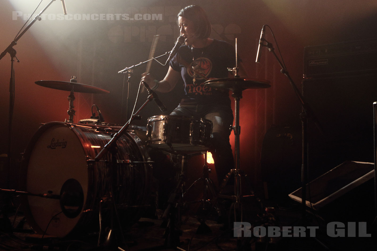 SHAKE SHAKE BOLINO - 2016-01-28 - PARIS - Point Ephemere
