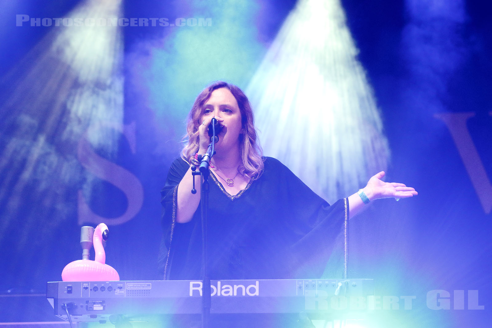 SLOWDIVE - 2017-08-27 - SAINT CLOUD - Domaine National - Scene du Bosquet