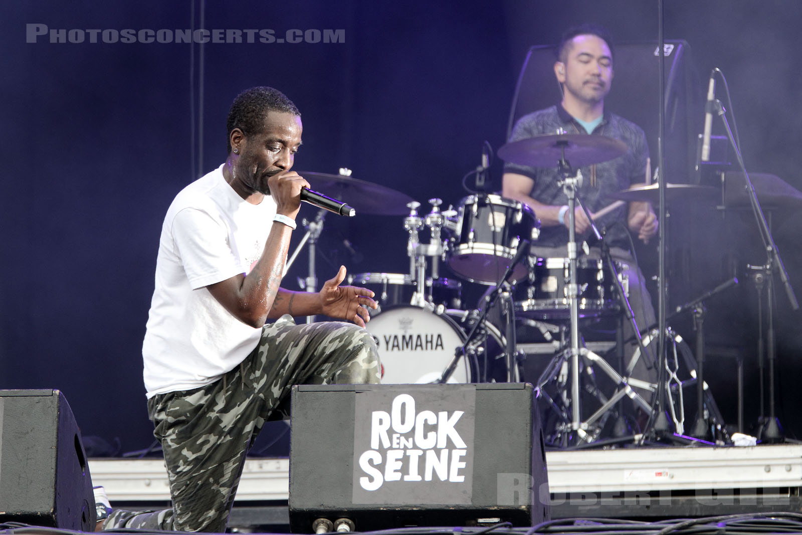 THE PHARCYDE - 2017-08-25 - SAINT CLOUD - Domaine National - Scene de la Cascade