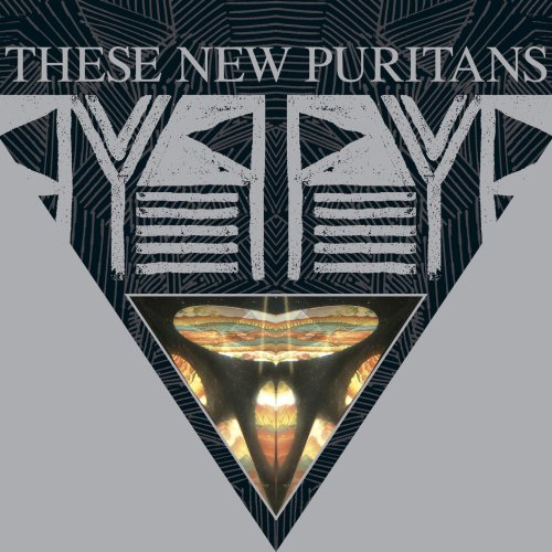 THESE NEW PURITANS- | Album : Hidden (2010) |