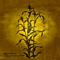 WOVENHAND- | Album : Live at Roepaen (2012) |